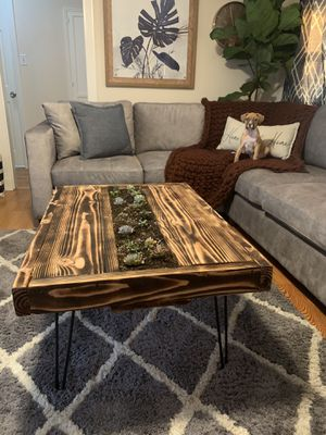 Coffee Table with Succulents for Sale in Covina, CA