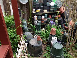 Plastic flower pots for Sale in Washington, DC