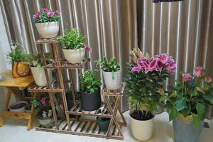 Wooden plant stand for Sale in Rowland Heights, CA