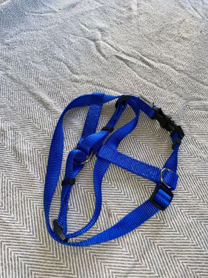 American Kennel Club Harness for Sale in Orland Park, IL