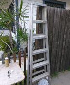 Ladder for Sale in US