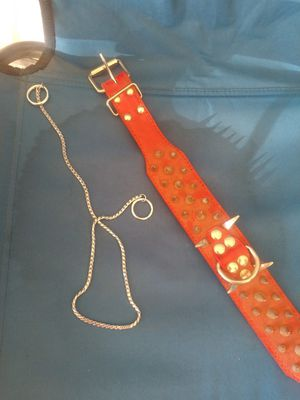 Bully dog collars for Sale in Dinuba, CA