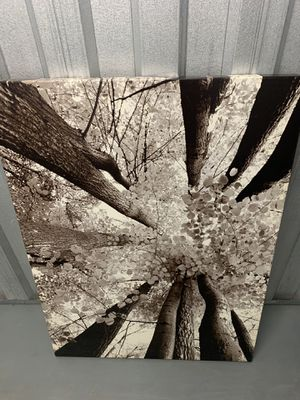 Picture for Sale in Silver Spring, MD