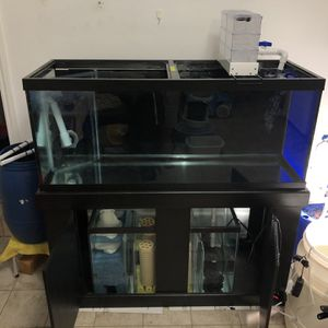 Combo 75 Gallons Aquarium Tank And 30 Gallons Sump Filtration for Sale in Westminster, CA