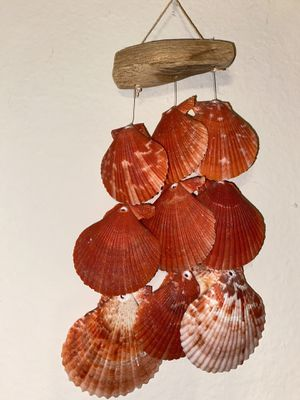 Shells room decor for Sale in Austin, TX