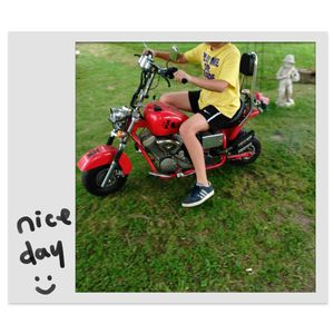 APC Mini Bike Chopper for Sale in Gordon, PA