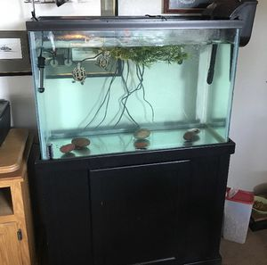 55 gallon Tall aquarium comes with filter and stand for Sale in San Marcos, CA