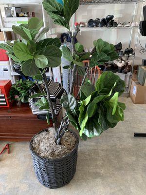 Plastic Tree for Sale in Kent, WA