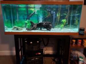 75 gallon aquarium with everything for Sale in Rockmart, GA