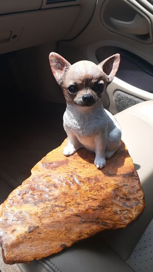 Chihuahua dog figure for Sale in Manteca, CA
