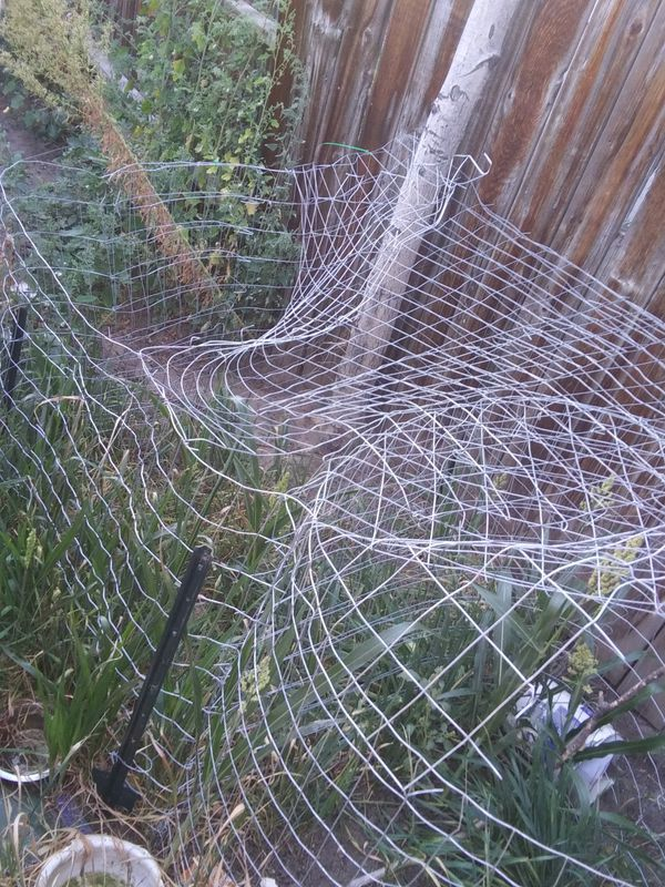 FREE. Wire for chicken pen or whatever