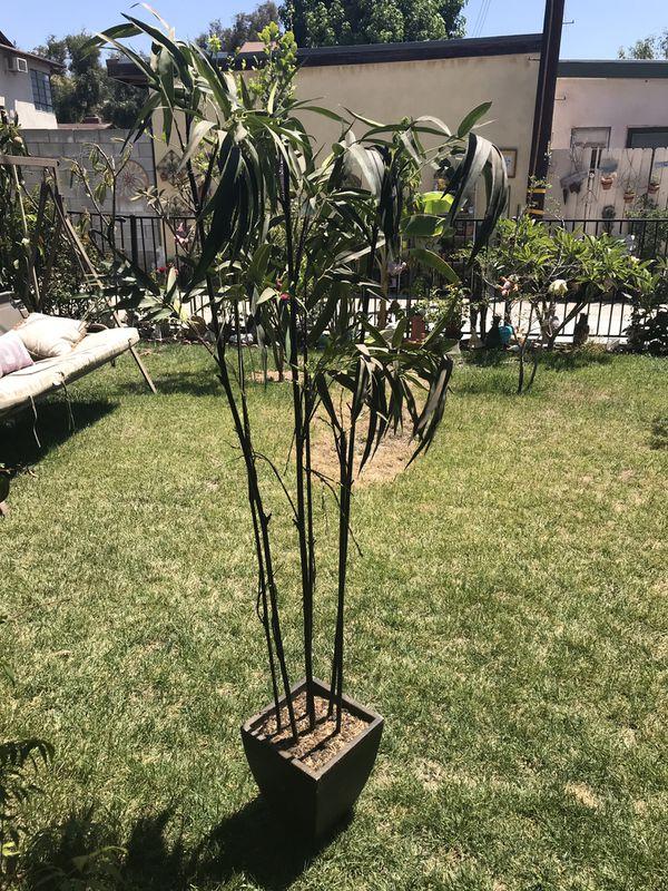 Fake bamboo plant