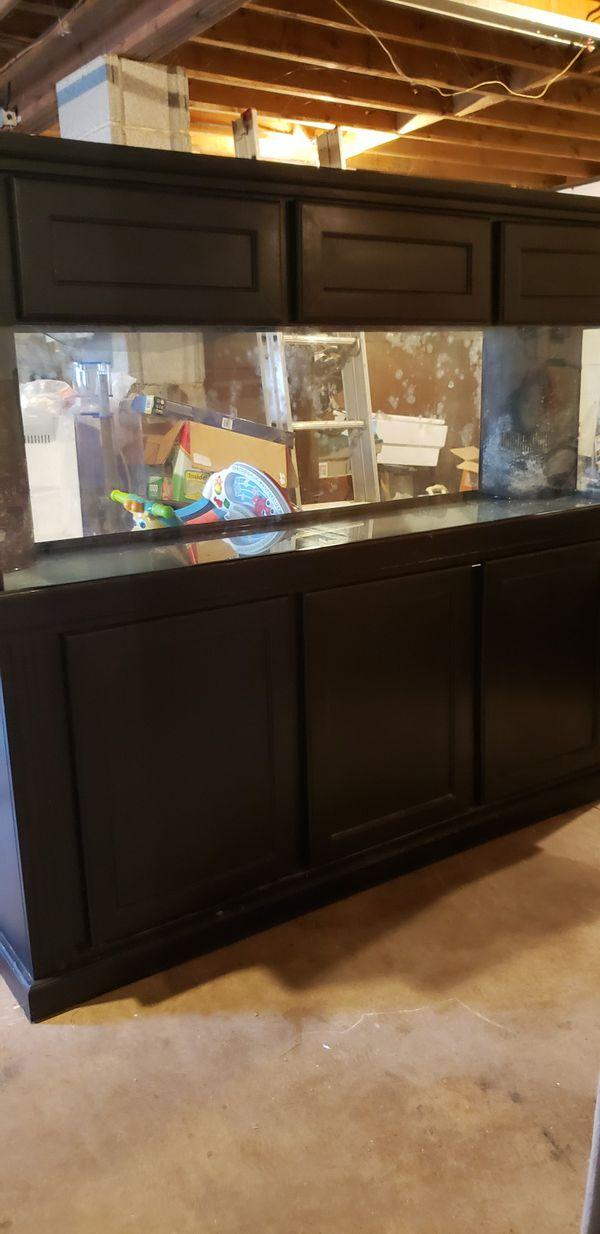 125gal fish tank