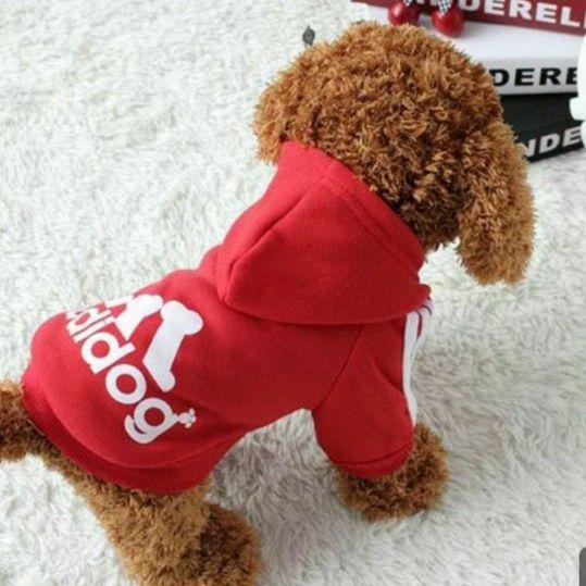 Adidog dog adidas clothes pet shirt harness cat hoody cute