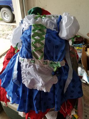 Blueberry girl Halloween costume. Adult small. for Sale in Grand Prairie, TX