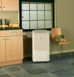 Lrge air conditioner and dehumidifier for Sale in Des Moines, IA