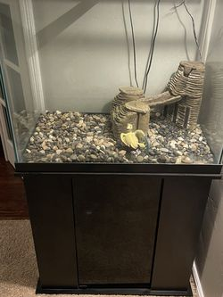 50gal Fish Aquarium for Sale in Modesto,  CA
