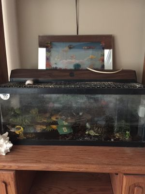 Fish tank for Sale in Eastpointe, MI