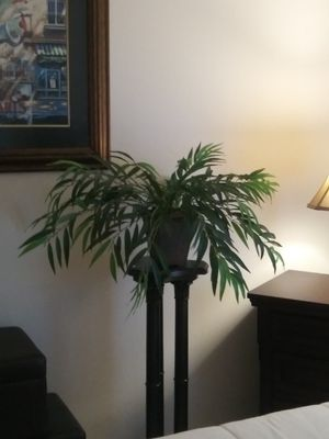 Bamboo and all types of artificial trees and plants. for Sale in Lehigh Acres, FL