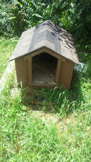 Dog house for Sale in Detroit, MI