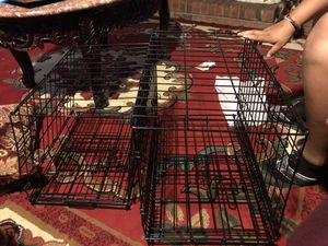 Brand New Dog Kennels for Sale in Austell, GA