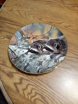 Raccoon collectable plate for Sale in Oceanside, CA