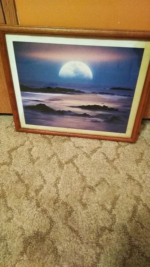 Late picture for Sale in Marshfield, MO