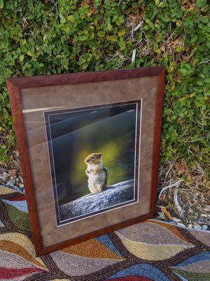 Fine art photography, framed art, Yosemite wildlife for Sale in Ontario, CA