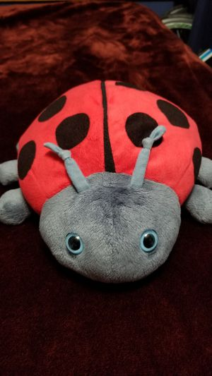 🐞Plush Ladybug 🐞Stuffed Animal (12 inches long x 10 inches wide)🐞 for Sale in Norfolk, VA