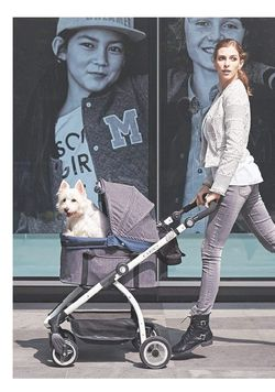 Pet 3-in-1 Travel Crate + Car Seat + Carriage Stroller in One for Sale in Mukilteo,  WA