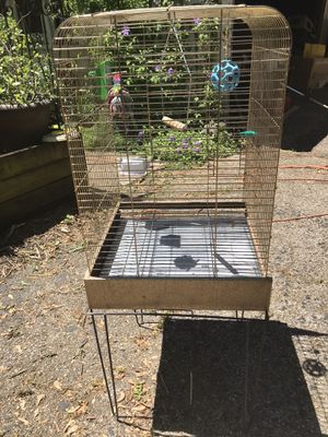 Brass bird cage with stand for Sale in Mundelein, IL