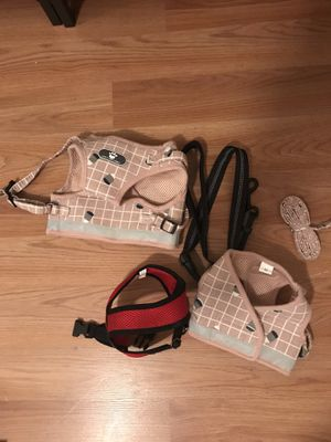 Dog or cat harness leash for Sale in Riverview, FL