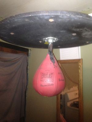 Heavy bag and speed bag for Sale in Phoenix, AZ