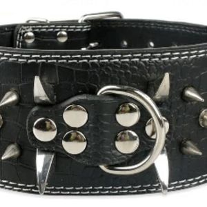 Dog Leather Collar XL for Sale in Chino Hills, CA
