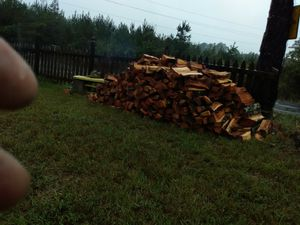 Red oak firewood for Sale in Pelahatchie, MS