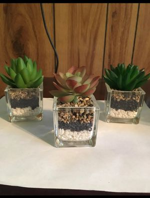Artificial plant for Sale in Pope, MS