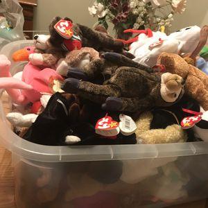 Beanie Babies 1.50 for Sale in Anaheim, CA