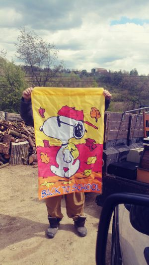 Snoopy flag only $15 for Sale in NO HUNTINGDON, PA