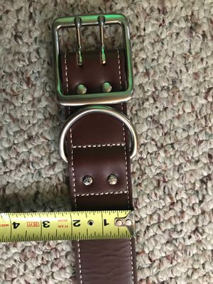 Dog Collar for BIG DOG!!! for Sale in Annville, PA