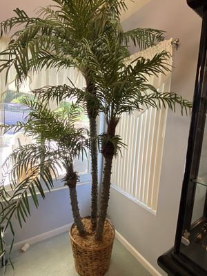 Artificial Palm for Sale in Lake Forest, CA