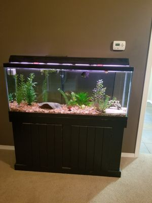 55 gallon aquarium w/ all accessories for Sale in Snohomish, WA
