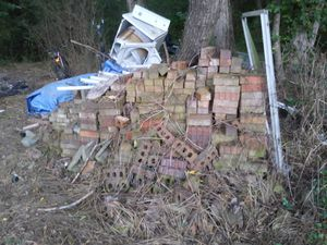 THERE'S OVER 300 WHOLE BRICKS AND ALOT OF PIECES COME LOOK FOR YOURSELF IT'S ALOT OF BRICKS 100$ DOLLARS IF YOU BUY THEM ALL for Sale in Montgomery, AL