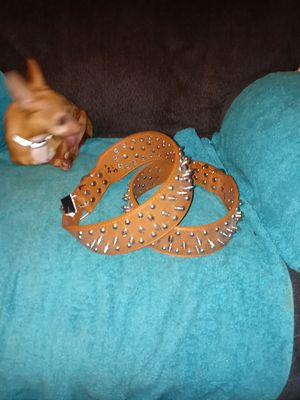 LEATHER SPIKE DOG COLLARS for Sale in South Zanesville, OH