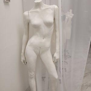 Female Maniki for Sale in Doral, FL