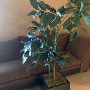 6ft Fake Plant In Amazing Condition for Sale in Sloan, NV