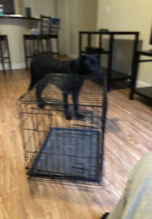 Medium sized dog cage for Sale in Lubbock, TX