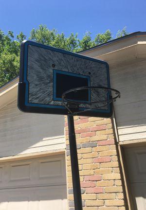 Lifetime Basketball hoop for Sale in Austin, TX
