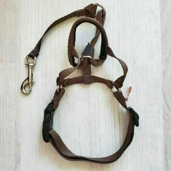 Top Paw Holt Walking Nylon Collar Brown Small for Dog Training Size 1 for Sale in San Jose, CA