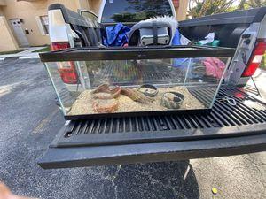 Reptile tank for Sale in Lauderhill, FL