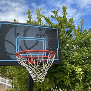 Basketball Hoop Lifetime Costco Sports Equipment Workout Gym Weights for Sale in Gilbert, AZ